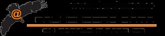 Falkenberg Data